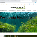 posidonia-1-1024x576